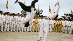 15 filmes de artes marciais para quem gosta de ação e pancadaria
