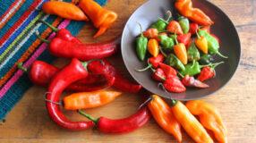 12 pimentas mais ardidas do mundo que vão queimar sua língua